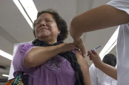 Organización Mundial de la Salud planea erradicar rabia en humanos