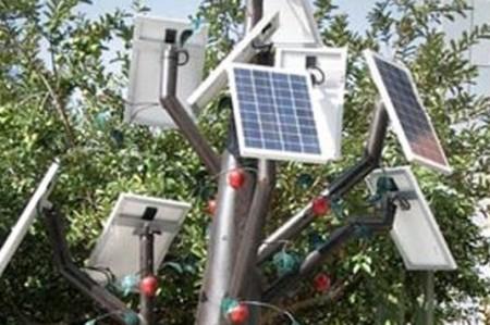 Universitarios crean árbol generador de energía eléctrica en Querétaro
