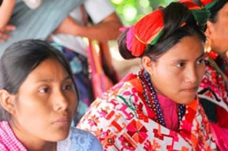 Bilingües, 7 millones de indígenas, informa el Inali