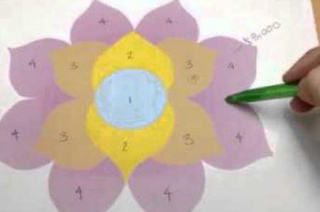 Advierten sobre invertir en pirámide 'Flor de la abundancia'
