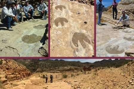 Huellas de dinosaurio son encontradas en el noreste de Sonora