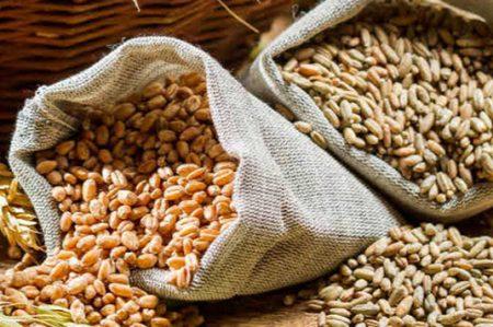 Consumo de granos enteros reduce riesgo de cáncer colorrectal