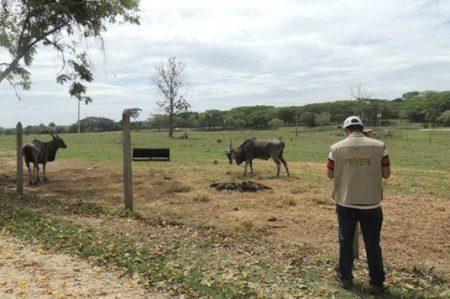Profepa inspecciona zoológicos en todo el país