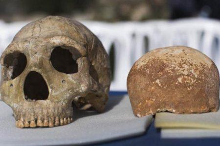 Homo sapiens son responsables de la desaparición de los 'hobbits'