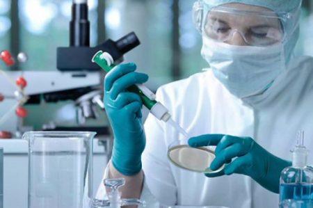 Hoy se conmemora el Día Mundial de la Ciencia