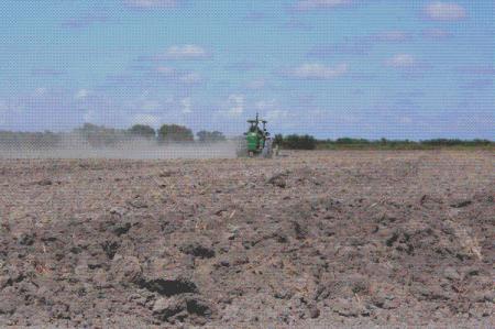 Campesinos de Reynosa denuncian afectación del 40% en siembras