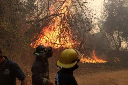 Registra Hidalgo 5 incendios de matorral y pastizal