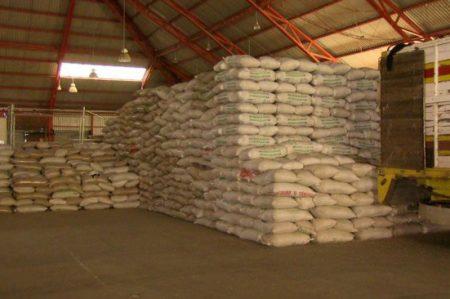Roban 25 toneladas de frijol en Guasave, Sinaloa