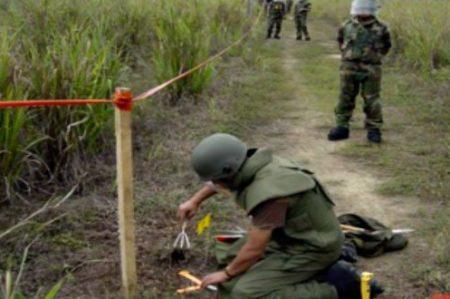 ONU pide aumentar 50% ayudas para desactivar minas