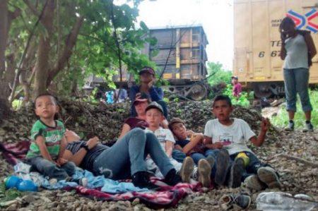 Urge proteger a migrantes: obispo