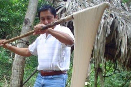 Chicle maya, de México para el mundo