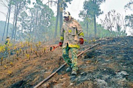 Alertan por aumento de incendios en el país