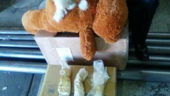 Policía Federal halla droga sintética al interior de oso de peluche