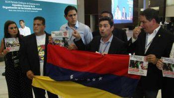 Diputados venezolanos se manifiestan en sesión plenaria de la OEA