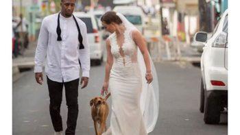 Jugador de la NFL utiliza su boda para ayudar a los perros sin hogar