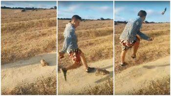 ¡Crueldad animal! Un conejo es lanzado más de 20 metros con una patada (VIDEO)