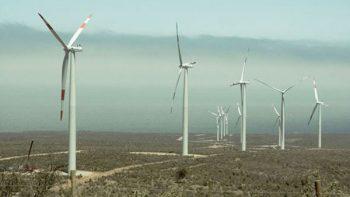 Empresa líder en energía eólica instalará planta de producción en Reynosa