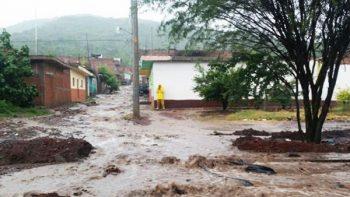 Estudio suma 2 mil 975 muertos en Puerto Rico por 'María'