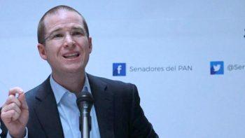 Elías Beltrán podría poner fiscal a 'modo0 en Fepade, dice PAN