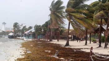 Levantan alerta roja en Veracruz tras paso de 'Franklin'
