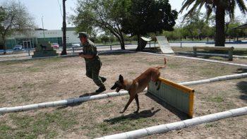 Invitan a reynosenses a disfrutar del 'Paseo Dominical' en el cuartel militar
