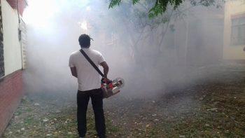 Intensifican campaña de fumigación contra mosquitos