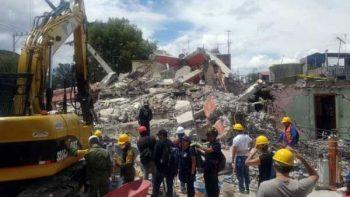 Los ladridos de 'Rocko' devolvieron la esperanza en Xochimilco