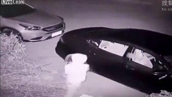 Karma divino: ladrón recibe lección al intentar quebrar un vidrio (VIDEO)