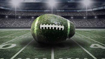 Ofrecen guacamole a precio de caviar para el Super Bowl