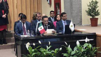Localiza Veracruz 343 fosas clandestinas en 2017