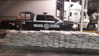 Decomisan 735 kilos de marihuana y 1.3 kilogramos de goma de opio