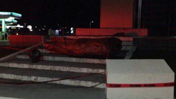 Viento tira estatua de ex presidente Miguel Alemán en Veracruz