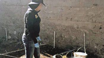 Hallan fosas clandestinas en viviendas de Chihuahua