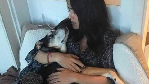 Salma Hayek triste…despide a una de sus mascotas