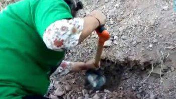 Rastreadoras…'sólo quiero los restos de mi hijo'