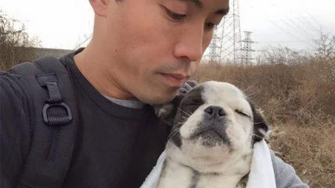 Activista salva a más de mil perros de ser comidos en festival de China