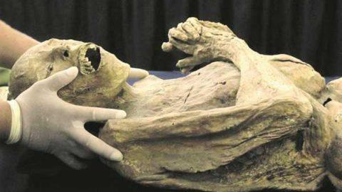 Ponen en cuarentena a momia viajera