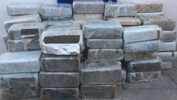 Policía Federal asegura casi 900 kilos de marihuana en Tijuana