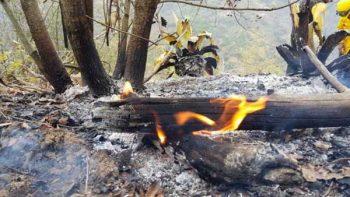 Controlan incendio forestal en Nuevo León
