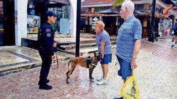 Policía Federal blindará navíos en Quintana Roo