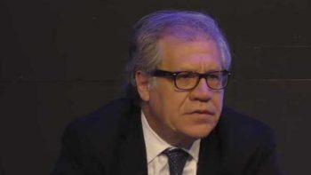 'Es mejor investigar a un candidato que a un presidente': OEA