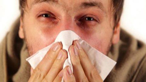Hasta 35% de la población mexicana padecen rinitis alérgica