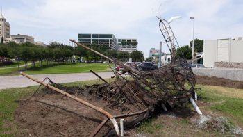 Abandonan 'restos' del pavo real