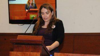 Diputada de Morena quiere que tropas de la ONU vigilen Zacatecas