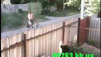 Hombre es atacado ferozmente por dos perros raza pitbull