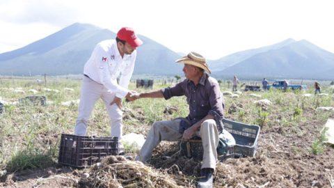 Ante las altas temperaturas, Marco González llama a proteger al campo