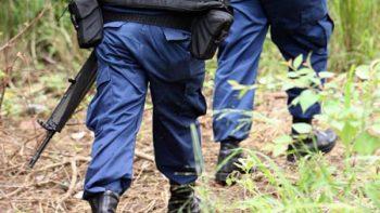 Reportan desaparición de dos policías en zona montañosa de Veracruz