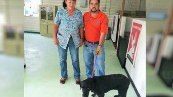 Rescatan a perro en interestación del Metro en la CDMX