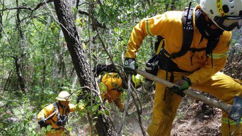 Combate Protección Civil NL incendios forestales de alto riesgo para brigadistas