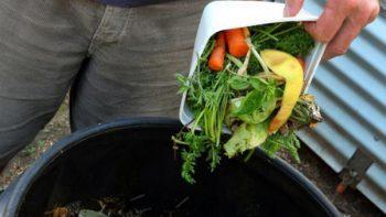 Aprovechan merma y desperdicio de alimentos en pro de necesitados